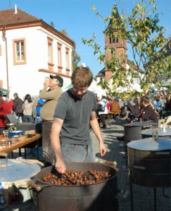 Keschdezeit in der Südpfalz
