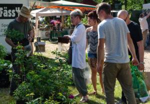 Hauensteiner Kräutermarkt fand dieses Jahr erstmals am Grillplatz statt