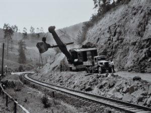 Rodungsarbeiten im Bereich der Felsnase