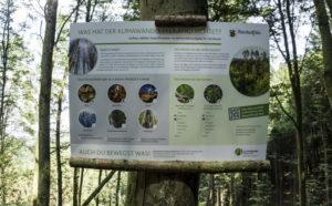 110.000 Hektar Wald sind durch Dürre, Sturm und Borkenkäfer massiv geschädigt
